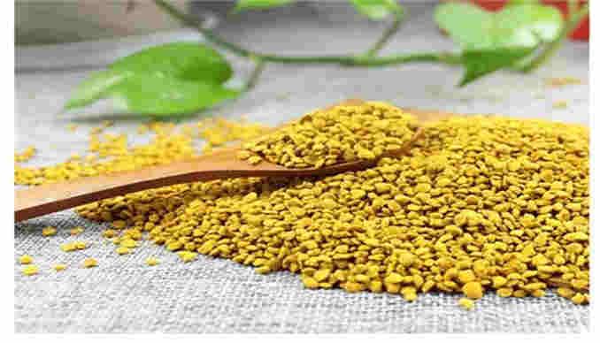 益母草花粉